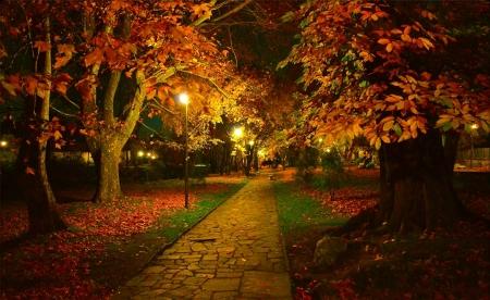 Autumn Night Other Nature Background Wallpapers On Desktop Nexus Image 2423833