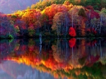 Colorful Autumn Reflection  Lake