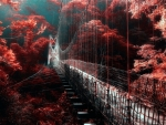 Red Autumn Forest And Bridge