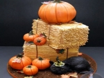 Pumpkin And Cat Cake