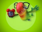 Parrot Wearing Glasses And Clock