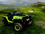 2019 Jeep Wrangler Trailcat