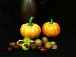Pumpkins And Nuts