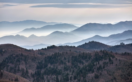 Mountains in Mist - nature, landscape, mist, mountains