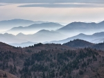 Mountains in Mist