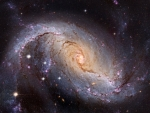NGC 1672 Barred Spiral Galaxy from Hubble