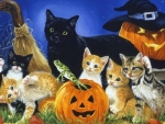 Halloween playful kittens