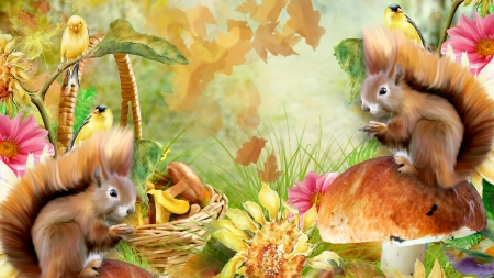 Squirrels N Birds - toadstools, fall, leaves, autumn, bird, squirrels, sunflower, mushrooms, woods