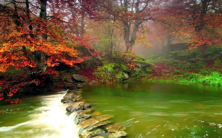 Forest River at Fall - colors, leaves, water, trees, stones
