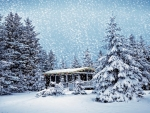 Luxury Snow Winter Scene