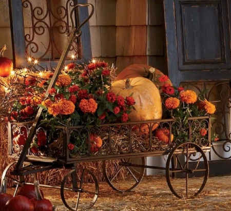 pumpkin carriage - photography, abstract, pumpkin, carriage