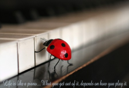 lady-bugs - red, black, quote, piano