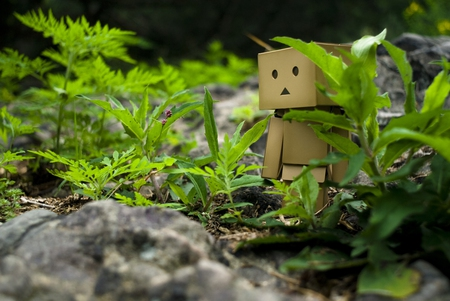Hiding Danbo - danbo, robot, cute