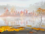 Misty Autumn by The Pond