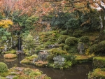 Japanese Garden in Fall