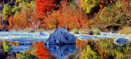 Lost Maples State Park in Autumn, Texas - Lakes & Nature Background