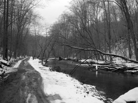 Winter river in the forest - black and white, nature, gothic, winter, dark