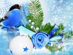 blue-bird-winter-season