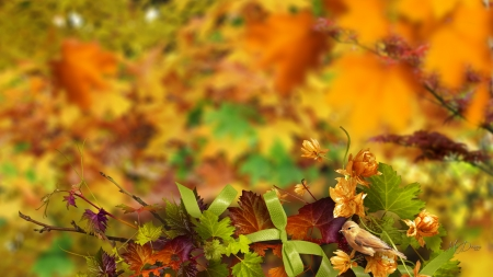Autumn Glory - fall, autumn, leaves, orange, bird, flowers, ribbons, bows, gold