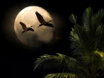 Moon Tree Birds