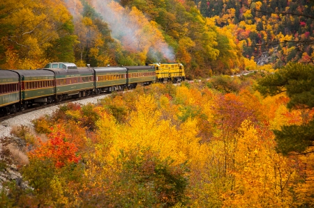 Fall  Train - ce, cu, sperante, tren