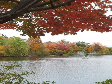 Fall Time at Mill Pond - fall time, Parks, autumn, new england, connecticut, ponds