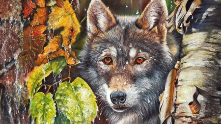 Fall Wolf - wild, wolf, trees, loup, Firefox theme, fall, lobo, autumn, free, endangered, foiliage