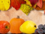 Autumn fruits & foliage