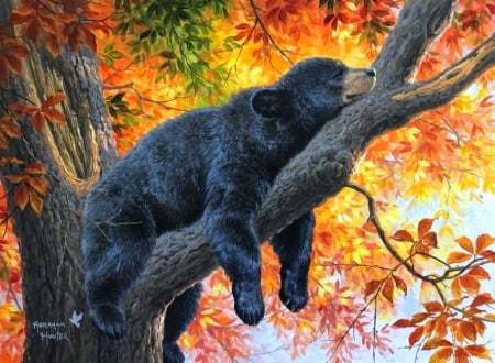 Fall Dreams - animals, autumn, fall season, dreams, love four seasons, bear, colors, trees, leaves, paintings, forests, nature