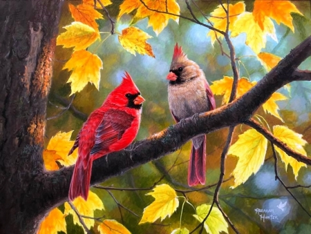 Fall Honeymoon - fall season, autumn, Fall Honeymoon, love four seasons, birds, colors, trees, cardinals, leaves, paintings, forests, nature, animals, pairs, couple