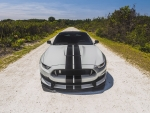 2018 shelby ford mustang gt350
