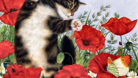 Cats Beauty Poppies Butterfly Flower Artwork Floral Pet Cat Feline
