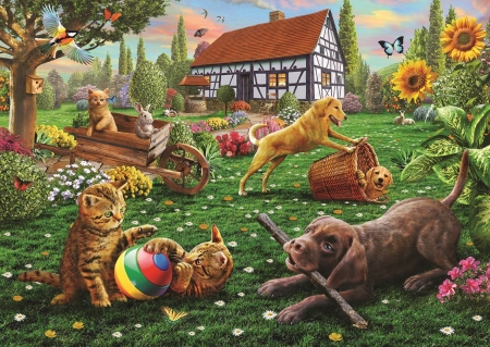 Dogs and Cats at Play - playful, puzzle, cats, dogs