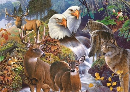 Forest Neighbors - eagle, neighbors, wolves, animals, puzzle