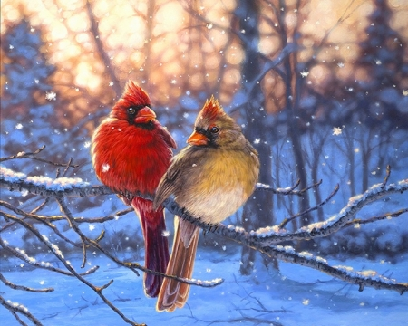 Love Birds in Winter - love four seasons, birds, nature, winter, animals, Christmas, love birds, attractions in dreams, xmas and new year, love birds of winter, paintings, snow