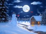 Christmas Moonlight