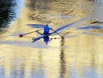 Rowing on Tiber, Rome