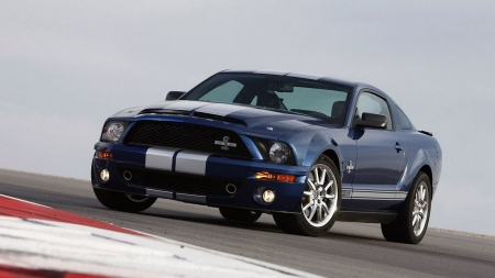 2008 Ford Shelby Mustang GT500KR - car, ford, vehicle, Ford Shelby Mustang GT500KR, blue cars, front view, shelby mustang