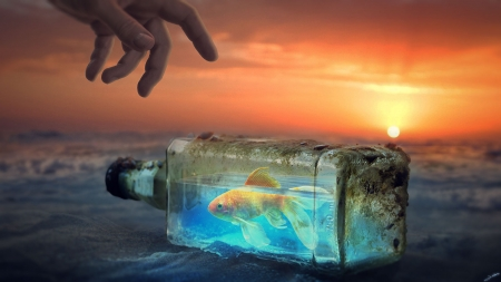 :) - bottle, summer, fantasyart0102, hand, creative, fish, sunset, fantasy, water, vara, blue