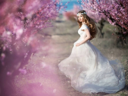 Bride - irina nedyalkova, bride, spring, white, pink, sakura, model, woman, blossom, girl, flower