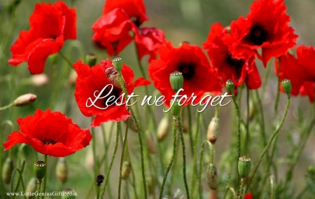 Remembrance Sunday Poppy D And Cg Abstract Background Wallpapers On Desktop Nexus Image