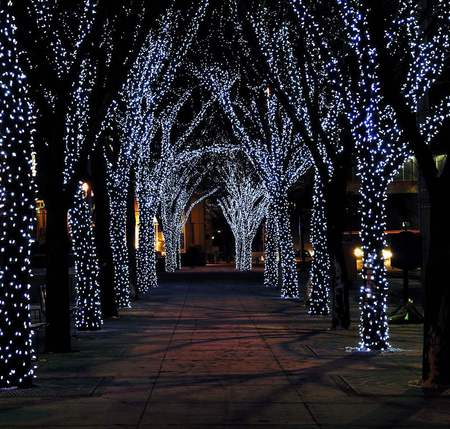Christmas Lights - beautiful, magic, xmas, lights, city, splendor, path, beauty, christmas light, way, road, lovely, romantic, romance, holiday, christmas, colors, new year, happy new year, trees, winter, tree, merry christmas, peaceful, nature, walk, alley