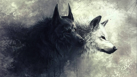Wolves Other Abstract Background Wallpapers On Desktop