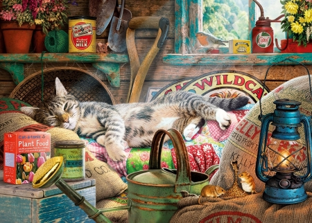 Snoozing in the Shed - window, bird, utensils, mice, flowers, garden, cat, artwork, painting