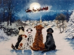 Dogs Watching Santa