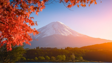 Autumn in Japan - red, mountain, japan, autumn, japanese, nature, scenery, fuji, fall