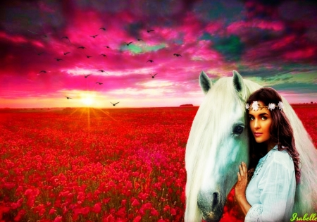 Till the Sunset ♥ - beautiful, sunset, horse, woman, sky, clouds, beauty, flowers, nature, pink, white, field, red, sun, flight, close, amazing, lovely, birds, fly