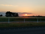 Sunrise over the Waikato