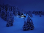 Winter night in the mountain