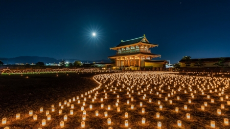 Nara Park - moonlight, park, night, lantern, japanese, japan, moon, nara, shrine, temple, scenery